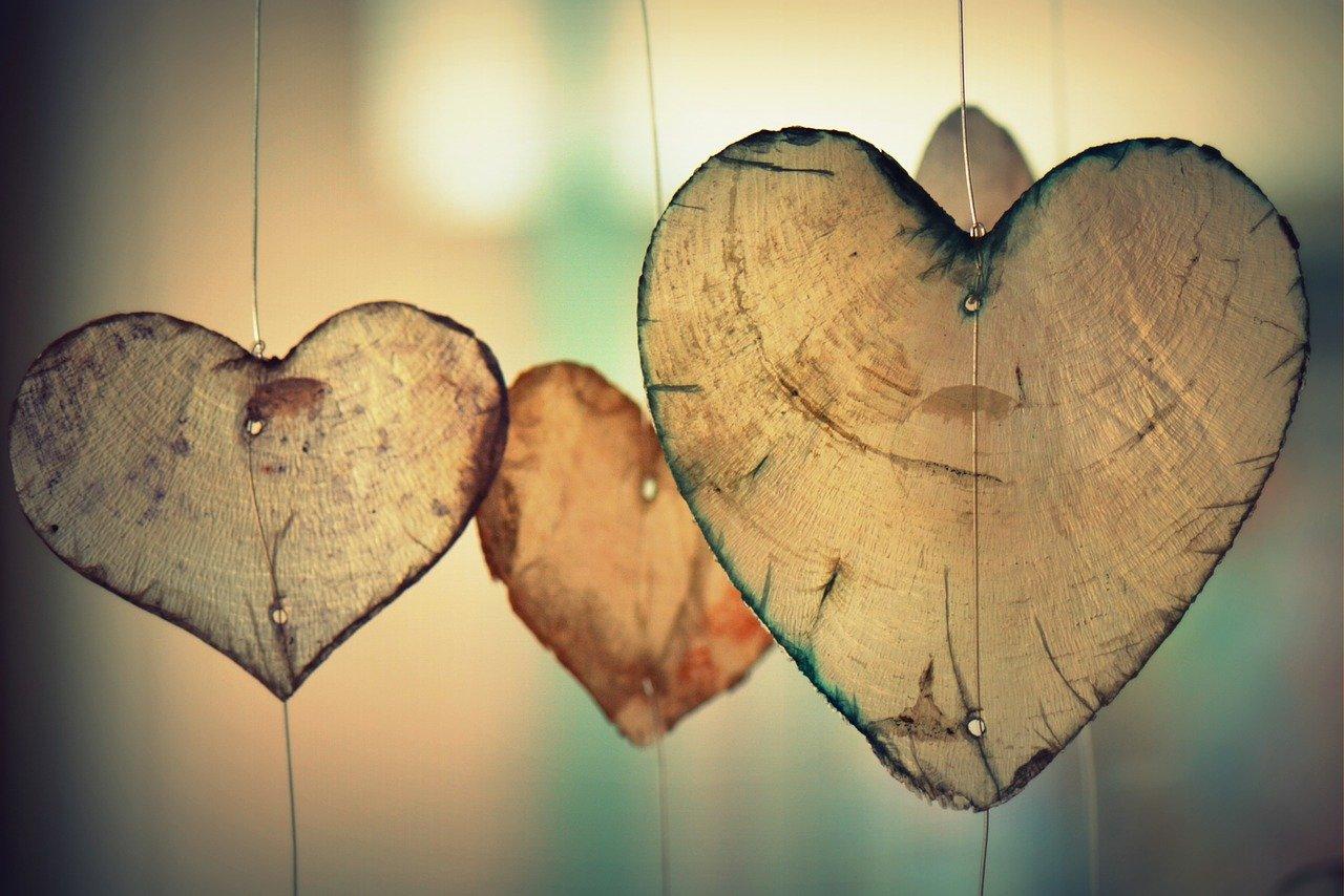Liebe und Sinne